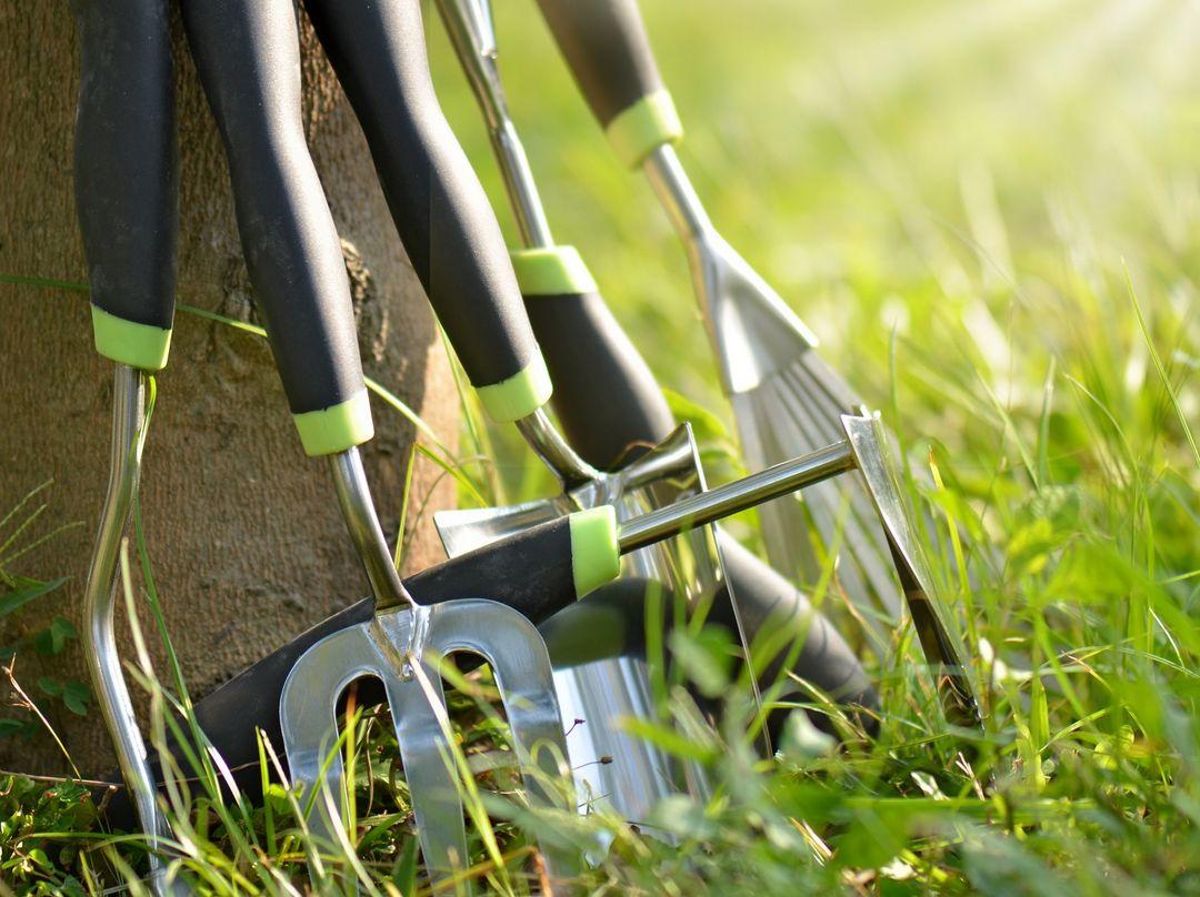 Rodzaje narzędzi ogrodowych